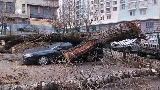 Что делать при буре, урагане, смерче