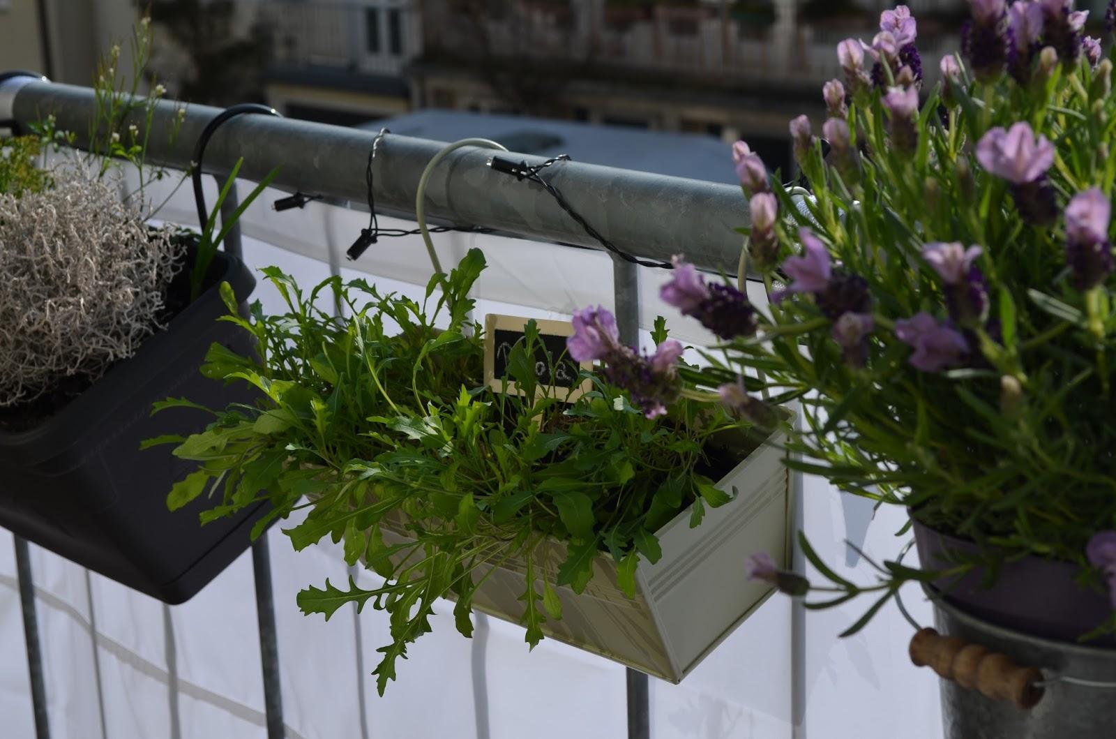 DEARTALLY DIY grünes Balkonpara s mitten in der Stadt