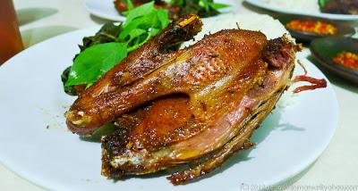 Bebek Goreng Menu Special Catering Rumahan