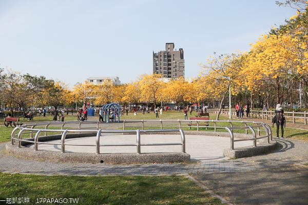台中北屯廍子公園賞黃花風鈴木,滑板場、綠籬迷宮、巨人腳印公園