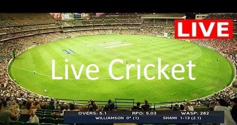 Live Cricket: 2010