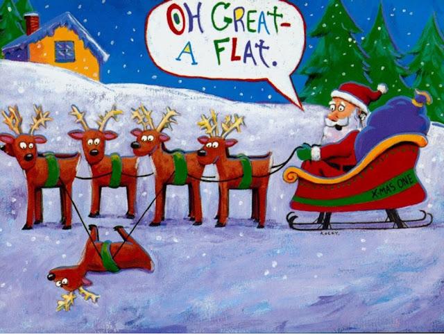 merry christmas funny image photo