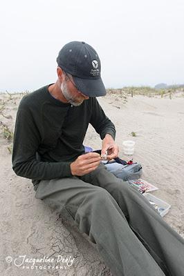 Carleton Eyster banding plover chick
