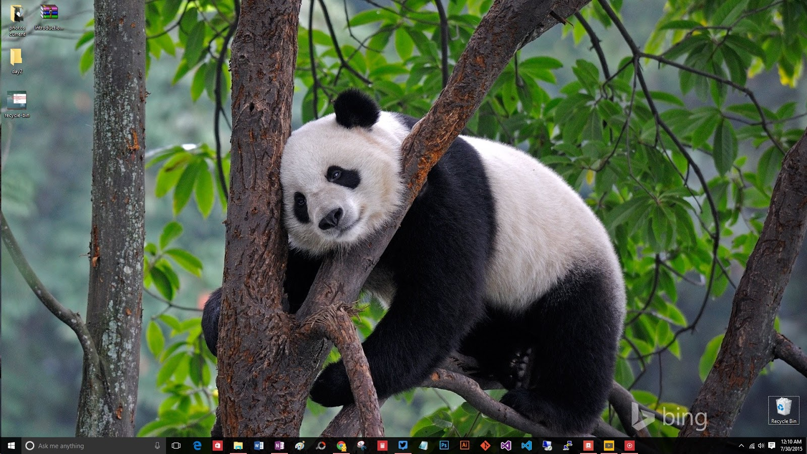 windows-10-desktop-panda