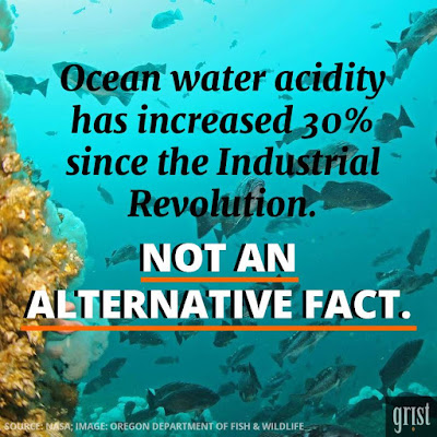 Poster of the Week - Clean water acidity has increased 30% since the Industrial Revolution.  Not an Alternative Fact (Credit: Grist)