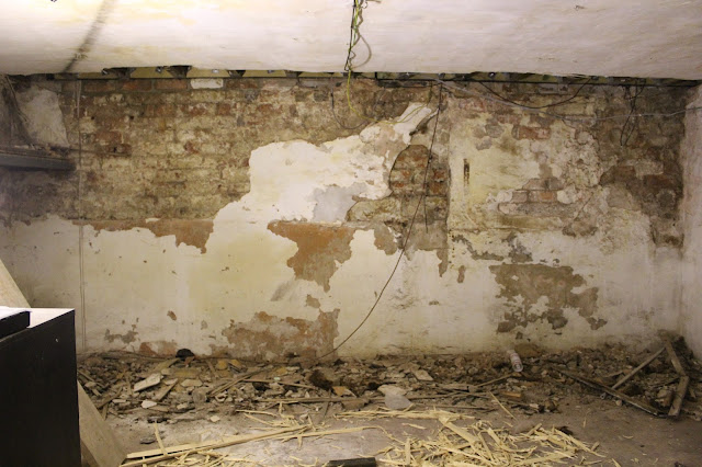 Victorian Basement with Joist Repair