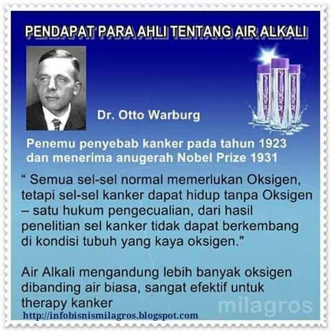 air alkali, air alkali milagros, air milagros, kanker, milagros utk tumor, obat kanker, obat tumor, sehat alami, stroke, tumor, pendapat ahli air alkali