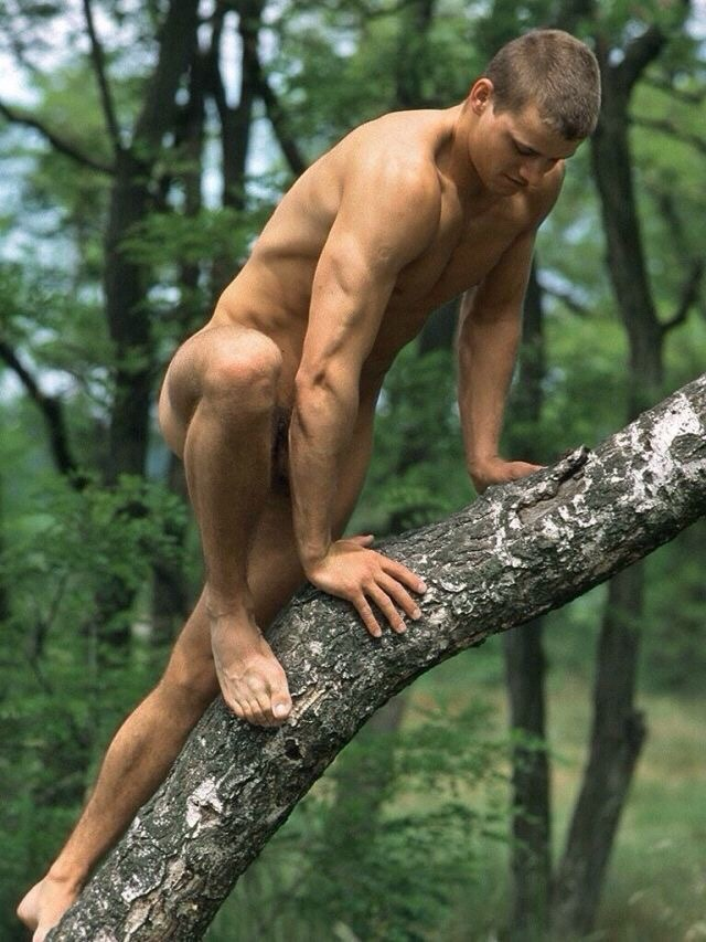 Handsome Muscular Man Naked Bare Torso Stock Photo