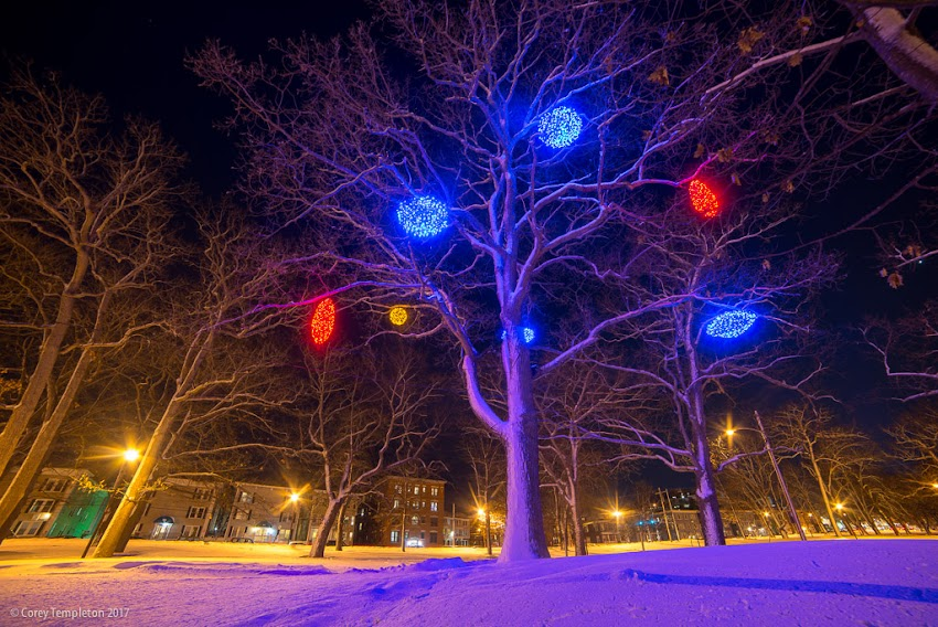 Portland, Maine USA February 2017 photo by Corey Templeton of a winter scene in Deering Oaks Park. Holiday lights by Pandora LaCasse Design.