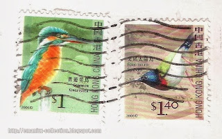 Common Kingfisher and Fork-tailed Sunbird