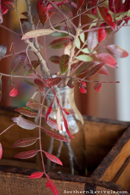 Southern Revivals | How to Create Stunning Fall & Winter Arrangements for Free