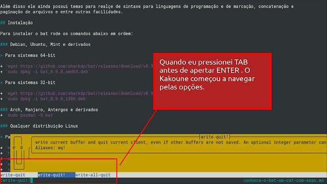 Pressionando TAB e navegando nas opções: