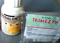 gambar trimezyn antibiotik penyakit ayam