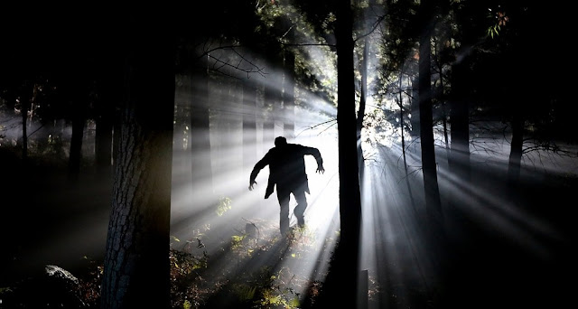Image: Frankenstein in the Forest, by Etienne Marais on Pixabay
