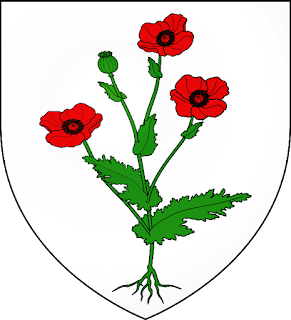 Remembrance du pavot  Kuttolsheim_Bas-Rhin