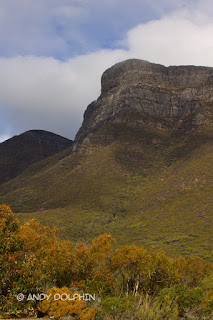 Bluff Knoll 2016 photo by Andy Dolphin