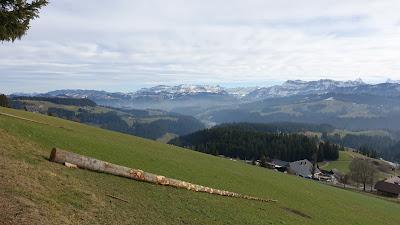 Blick zu den Emmentaler Alpen