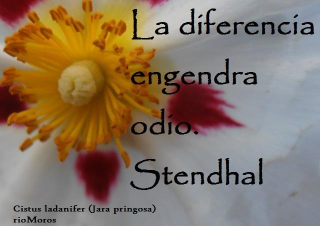 La diferencia engendra odio Stendhal