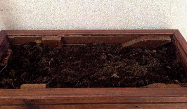 Preparação do solo na Horta