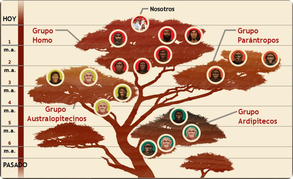 Historia Ambiental Cdmx El Impacto Del Cambio Climático Evolución Humana Catástrofes Demográficas Y Migración