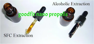 propolis tanpa lilin lebah