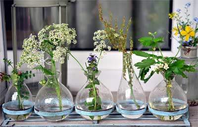 ditata di atas rak, ditambahkan beberapa kuntum bunga potong atau tanaman liar