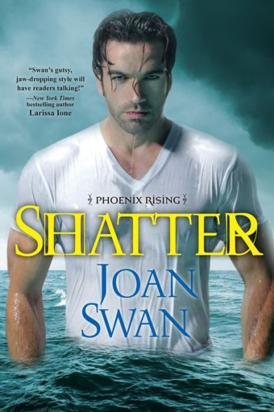 2012 Debut Author Challenge Update - Part 12