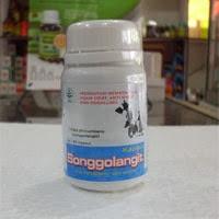 Jual Herbal Anti Nyeri Sendi Kapsul SONGGOLANGIT di surabaya