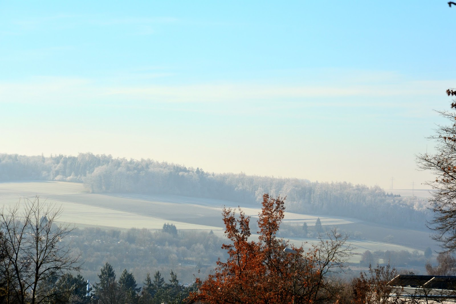 View of Ulm from Eselsberg with a dusky blue sky