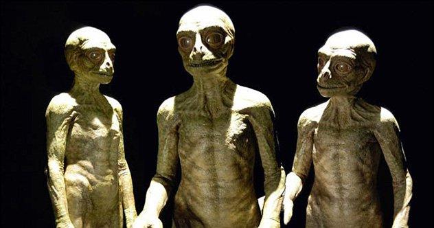 Monitor Lizard / Human Hybrid — Stan Winston School of ...  Real Reptilian Hybrids