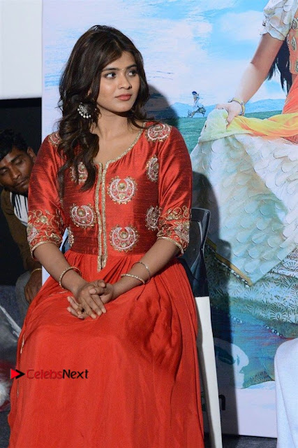 Actress Heba Patel Latest Stills in Red Dress at Mister Movie Trailer Launch Event  0021.jpg