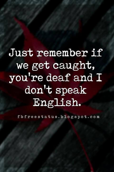 funny friendship quotes, Just remember if we get caught, you're deaf and I don't speak English.