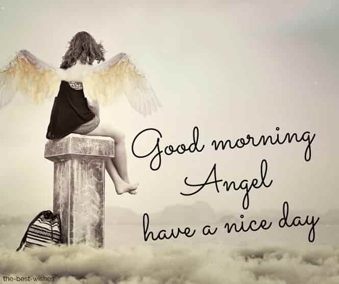 beautiful angel pictures have a nice day