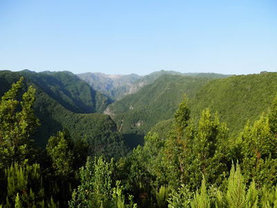 Panorama Los Tilos
