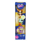 Littlest Pet Shop Tubes Chihuahua (#1568) Pet