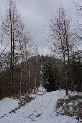 Trójgarb zejście w kierunku Witkowa Śląskiego