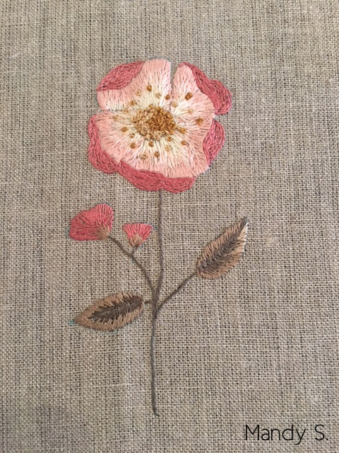Cecelia Rose Stitch Along: your results!