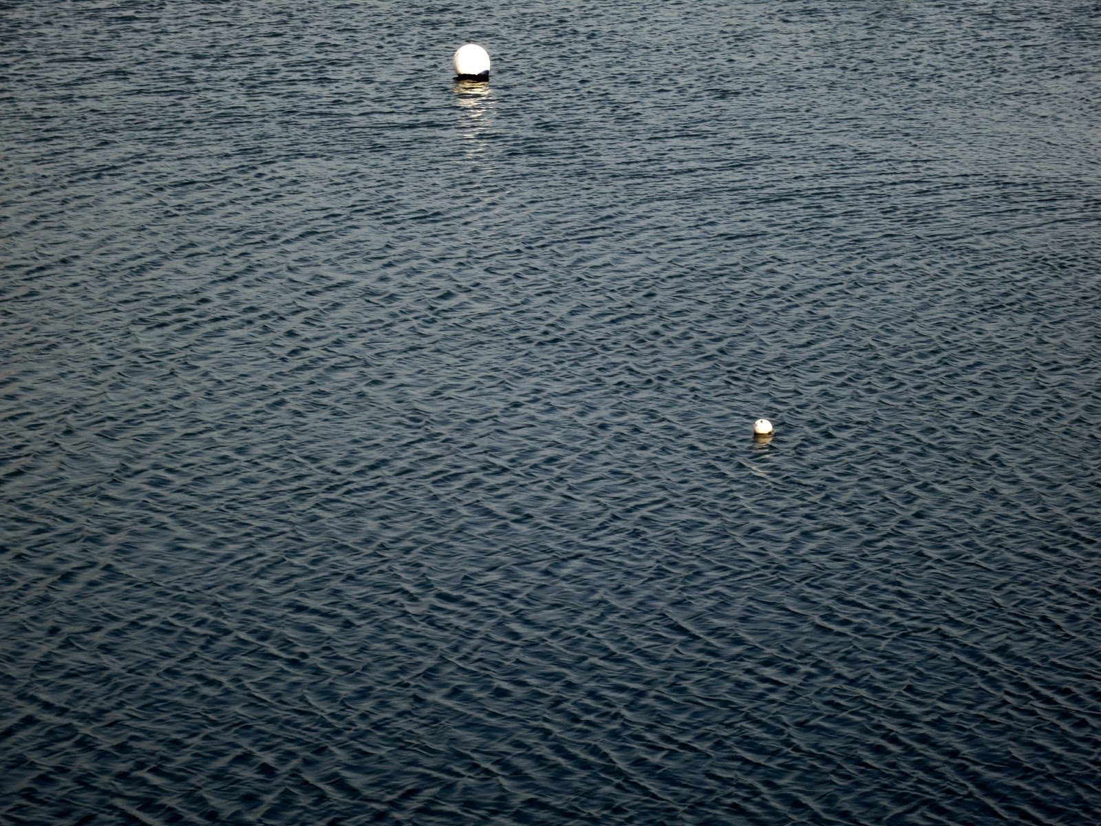 Large area of highly rippled water and two white buoys with reflections.