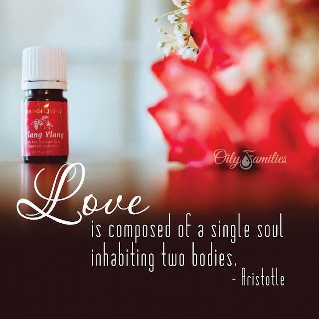 Love, Romance, and Essential Oils • Bonny's Oysterbed7