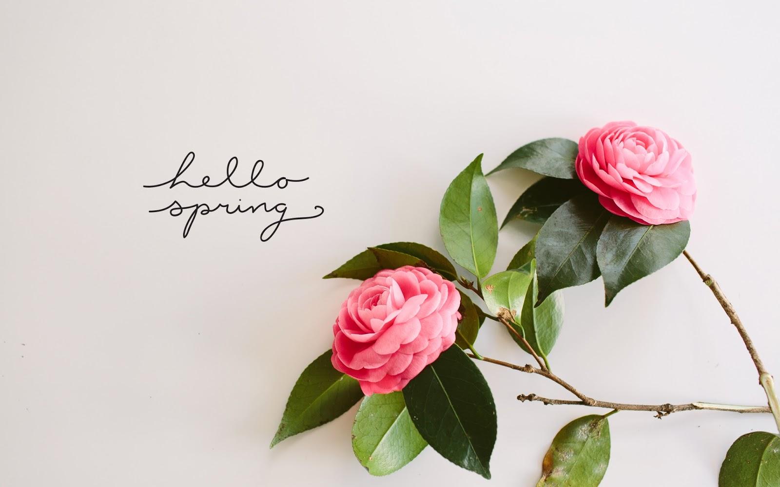 Primavera de flores e amores