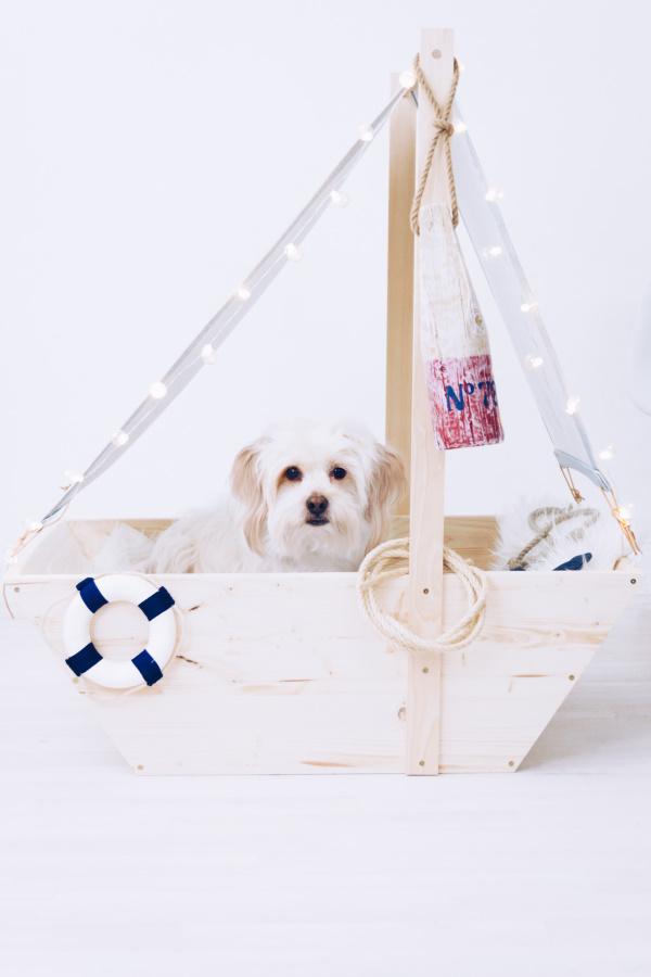 DIY Hunde-Bett. Hundekörbchen als Segelboot selbermachen. titatoni.de