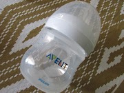 Avent or Pigeon