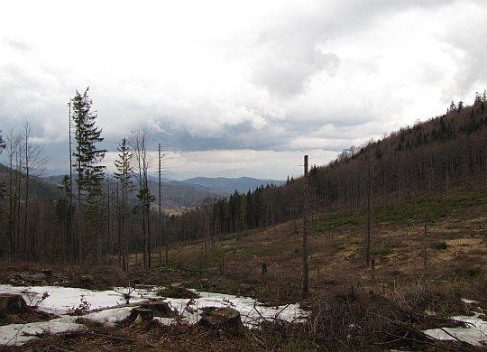 Widoki z Górnych Głuchaczek (słow. Horne Hluchačky, 920 m n.p.m.)