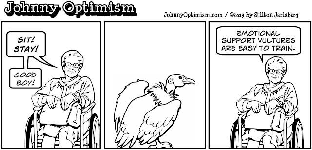johnny optimism, medical, humor, sick, jokes, boy, wheelchair, doctors, hospital, stilton jarlsberg,  old woman, emotional support, pet, vulture, tricks