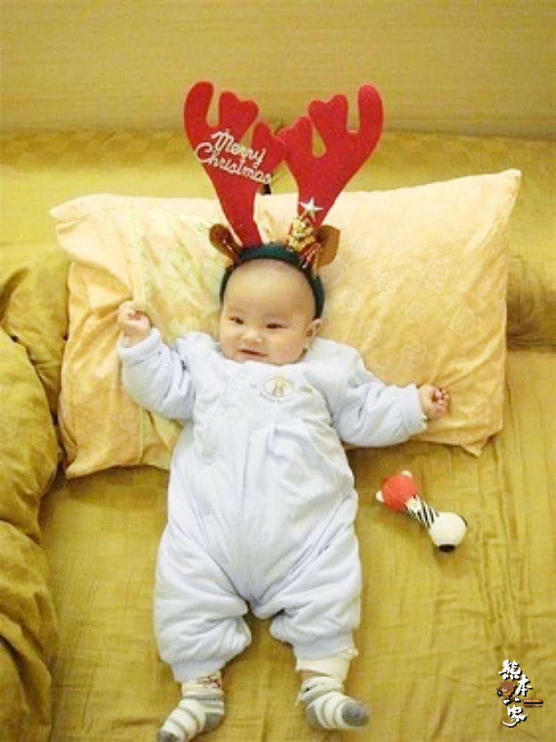 小麋鹿~我的聖誕禮物何時送來呀