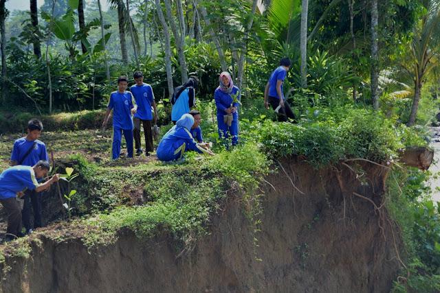 Cegah Abrasi, Kantor Lingkungan Hidup Abdya Tanam Ribuan Pohon