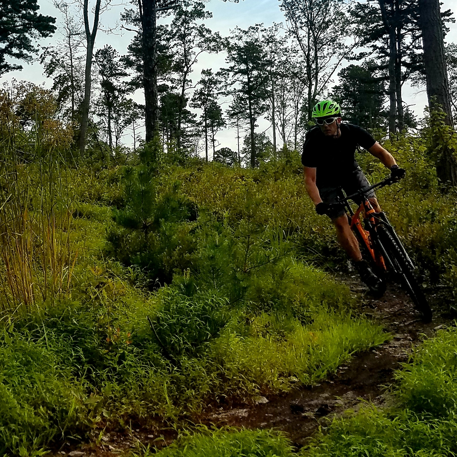 ALL TRAILS LEAD TO ICE CREAM: TRAIL TIPS