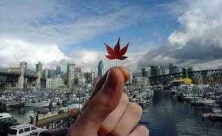 الهجرة الى كندا عن طريق الزواج بكندية وطرق التلاعب بالقوانين