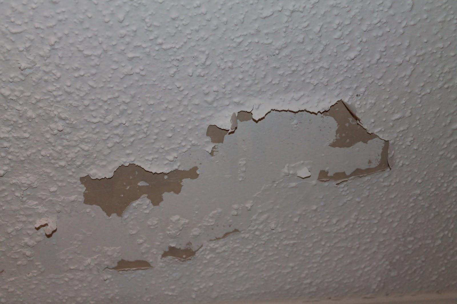 How Do I Know If My Artex Ceiling Has Asbestos | www ...