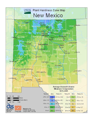 USDA Plant Hardiness Zone Map of New Mexico from http://planthardiness.ars.usda.gov/PHZMWeb/#